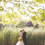 Minstrel Court Wedding Venue - The reeds in summer